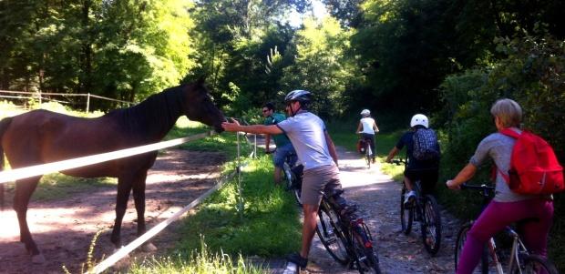 biciclettata (3)